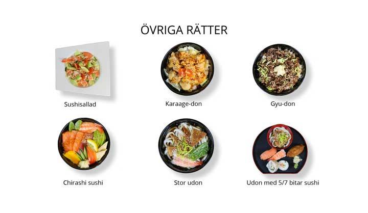 sushi-ovriga-ratter
